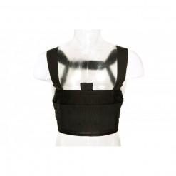 Blue Force Gear Ten-Speed 308 Chest Rig Black