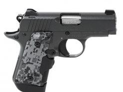 Kimber .380 ACP Micro Convert